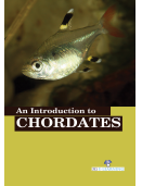 An Introduction to Chordates